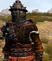 File:Faction armor.jpg