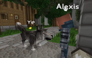S2Ep49 Yip in Werewolf Form talking to Alexis