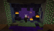 Nether portal and travis