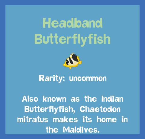 File:Fish2 Headband Butterflyfish.png