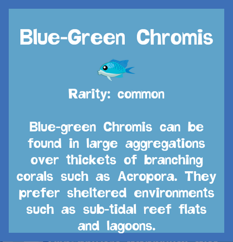 File:Fish2 Blue-Green Chromis.png
