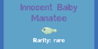 Innocent Baby Manatee