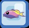 File:Fish Bartlett's Anthias.png