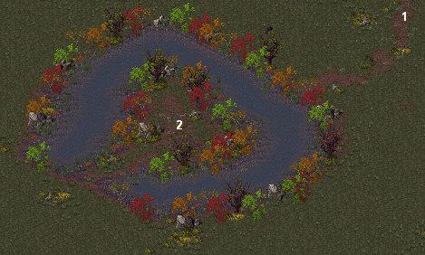 Op-strange-pond
