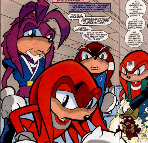 File:Brotherhood Knuckles01.png