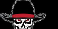 Dallas Vigilantes