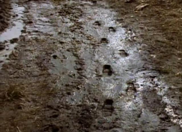 File:6frozenghostfootprints.png