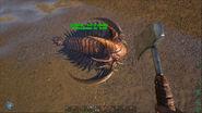 ARK-Trilobite Screenshot 007