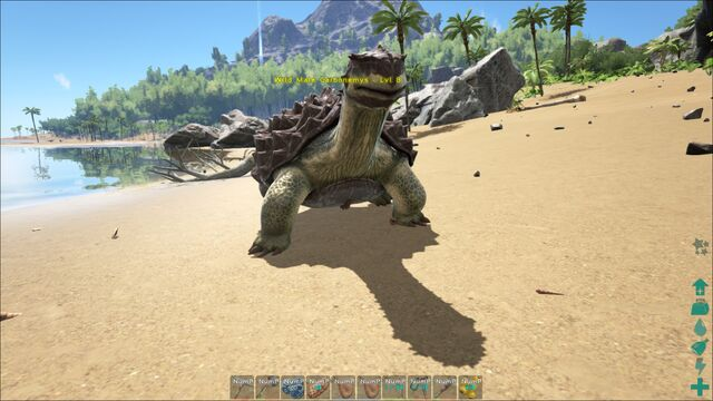 File:ARK-Carbonemys Screenshot 002.jpg
