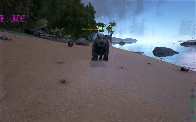 File:ARK-Sabertooth Screenshot 004.jpg