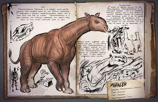 31 - Paraceratherium