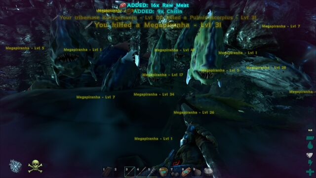 File:ARK-Piranha Screenshot 005.jpg