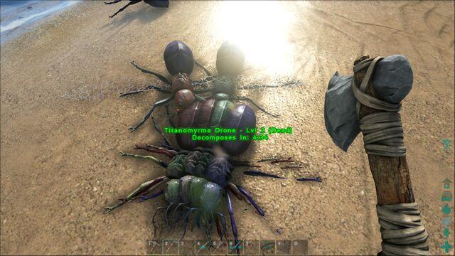 File:ARK-Titanomyrma Screenshot 006.jpg