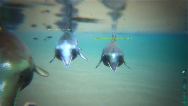 File:ARK-Ichthyosaurus Screenshot 001.jpg