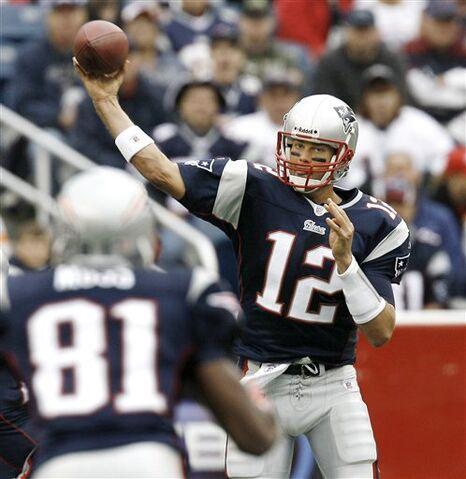 File:Bradyt.jpg