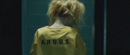 Harley Quinn from behind