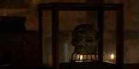 Skull-shaped box