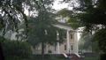 Collins Plantation.png