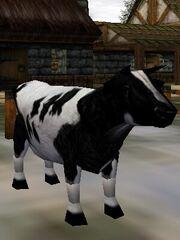 Cow (Creature) Live