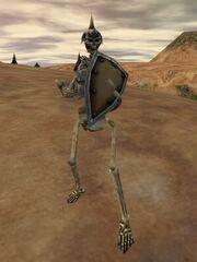 Great Skeleton Live