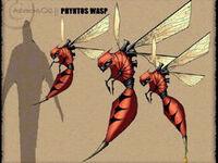 Wasp Art