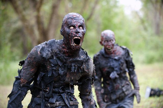 File:07 AMCs-The-Walking-Dead.jpg