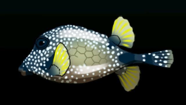 File:SmoothTrunkfishACP.png