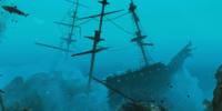 La Concepcion wreck