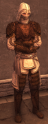 Male Assassin Level 3 Armor