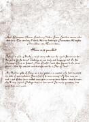 Codex P11 v