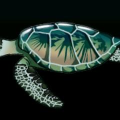 Green sea turtle - 稀有度:非常稀有,尺寸:大