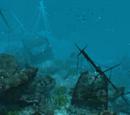 San Ignacio wreck