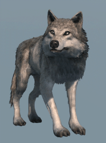 File:DB Wolf.png