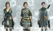 Brigand outfits