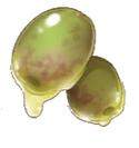 Oil Fruit
