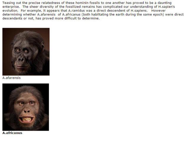 File:Tracing Evolution H sapien two A photos.jpg