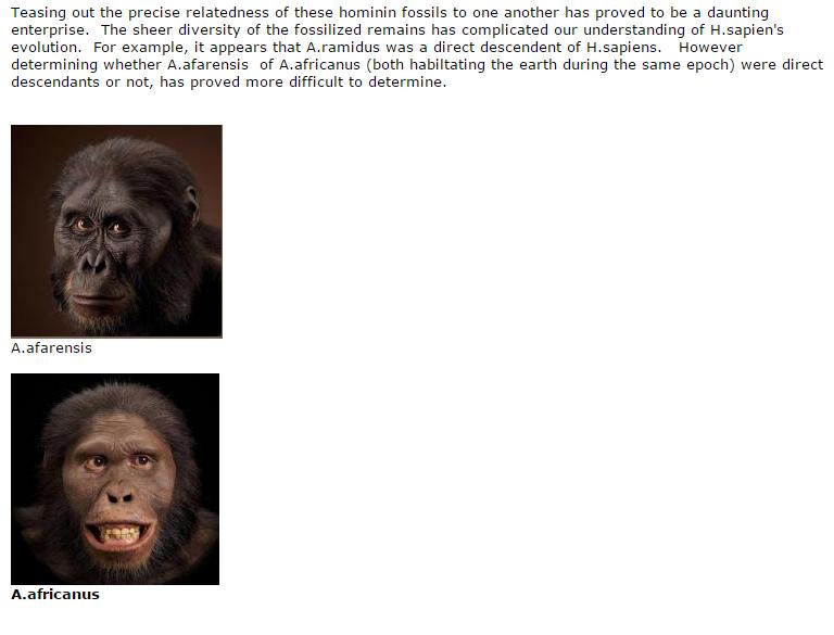 Tracing Evolution H sapien two A photos