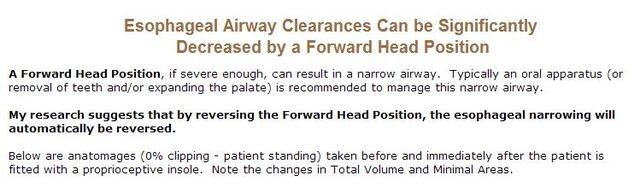 File:Airway Clearance Info.jpg