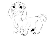 Wieselhund2