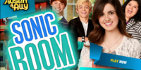 Sonic Boom (Game)