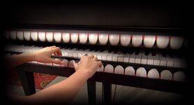 Piano Teeth; F&FB