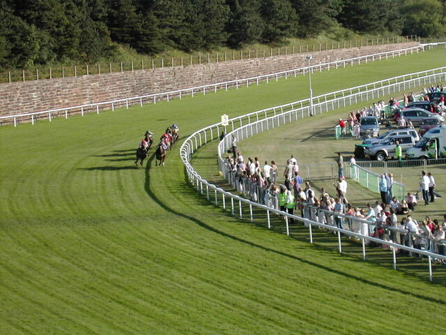 File:Racecourse In Chester3.jpg