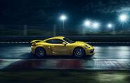 Porsche-cayman-gt4-2015-4705