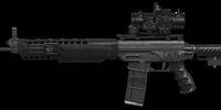 SG556 Ultimate Custom
