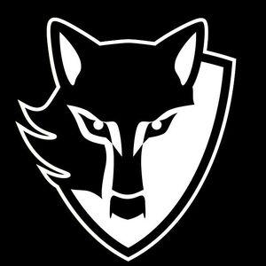 Dark Stalkers Emblem