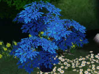File:Moon peach tree.png
