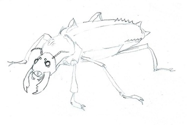 File:Insect demon.jpg