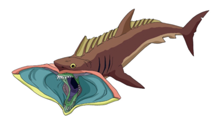 File:Sand shark.png