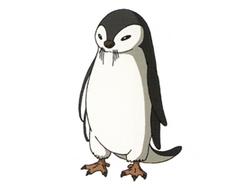 Otter penguin