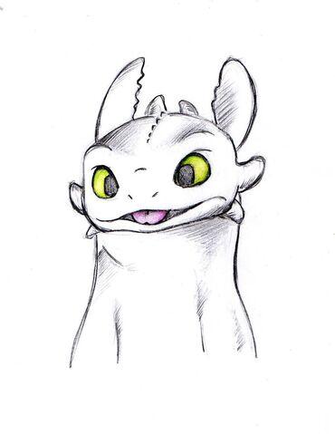 File:Toothless by liz732.jpg